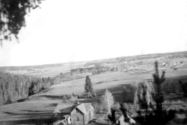 Maisema Kovelahdesta 50-luvulta, Kuva: Martti Ahola