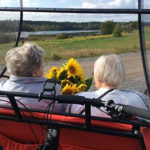 Kaksi vanhaa henkilö pihakeinussa