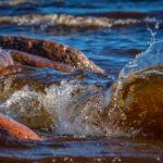 Aaltoja kyrösjärvessä
