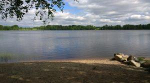 Kuva toivolansaaren koirien uimarannan rannalta.
